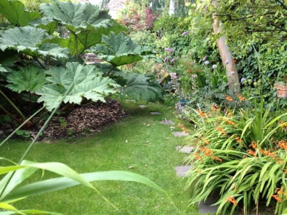 Don's garden