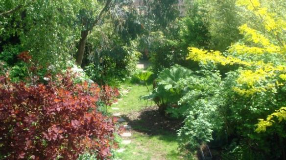 Don Letts garden2