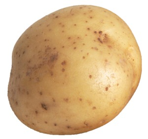 the umble spud