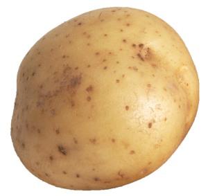 potato-bullet