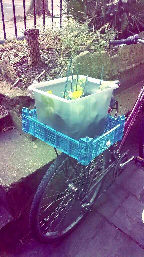 Bens bike