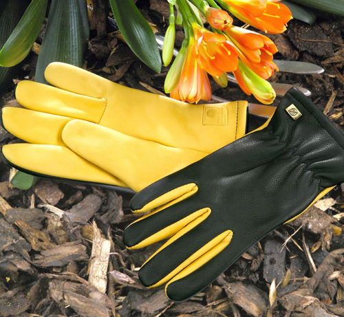 Dry-Touch-Gloves_large