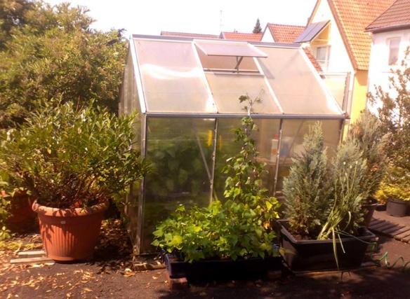 Jochen 2013 greenhouse