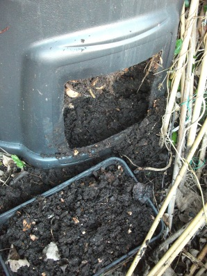 compost bin 2015