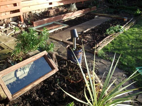 garden stardate jan 2015