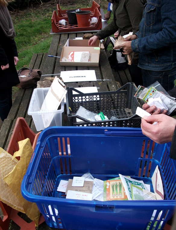 Seedswap deptford