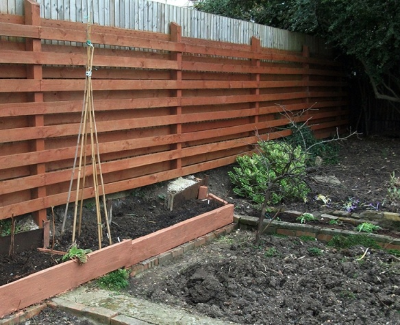 Raised bed and bean canes