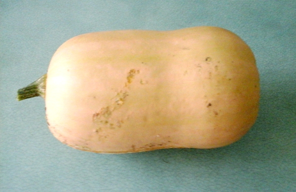Butternut squashes away!