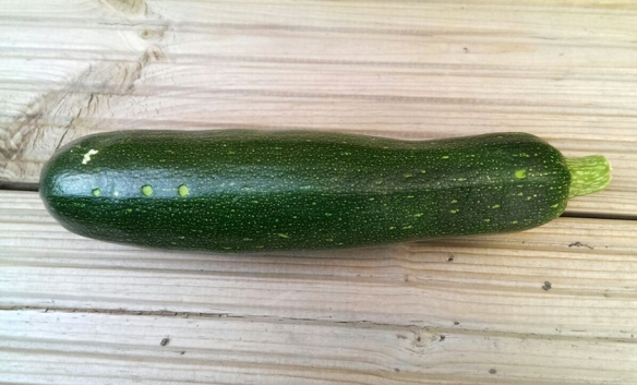 Paul's courgette
