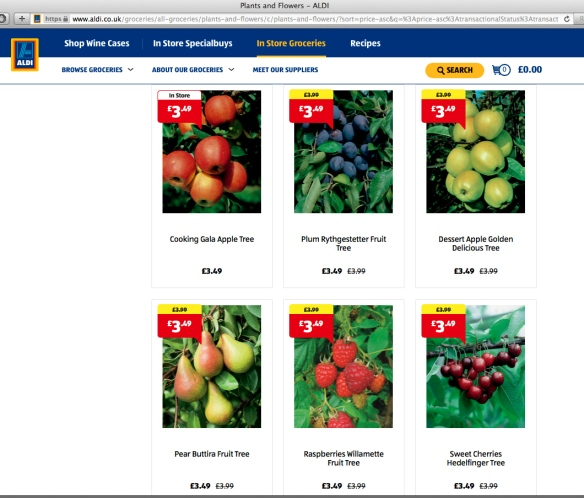 aldi fruits
