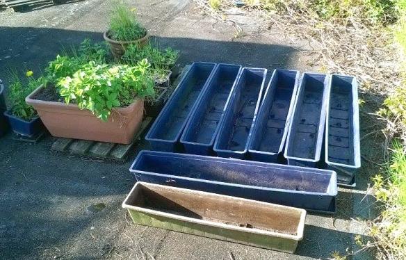Jochen pots pre planting