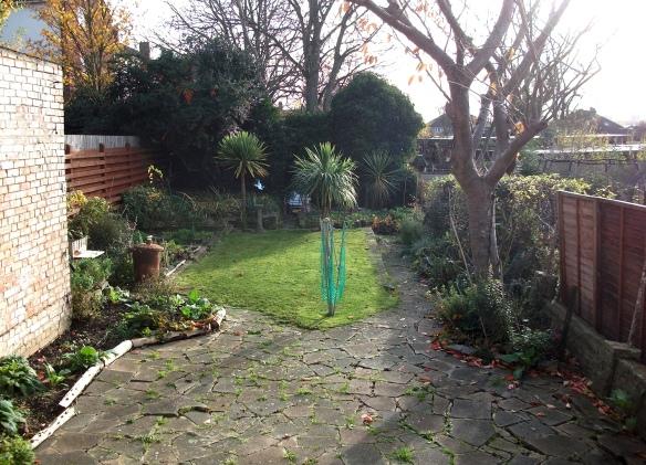 back-garden-november